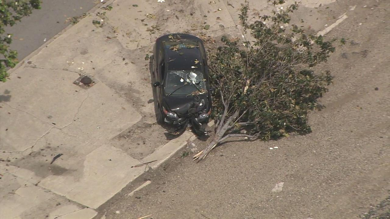 A stabbing victim was found behind the wheel of a vehicle that crashed into a tree near Soto Street and Valley Boulevard, police said.