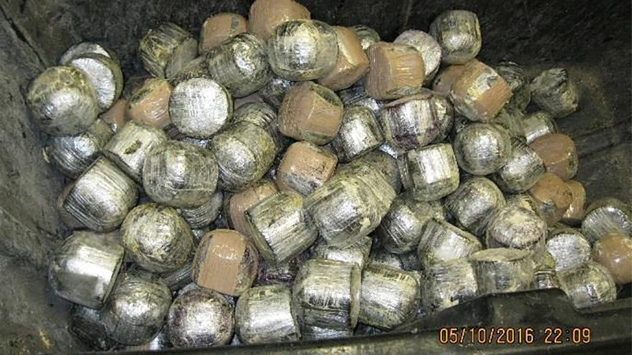 U.S. Customs and Border Protection agents at the Pharr International Bridge cargo facility discovered 1,423 pounds of alleged marijuana within a shipment of fresh coconuts.