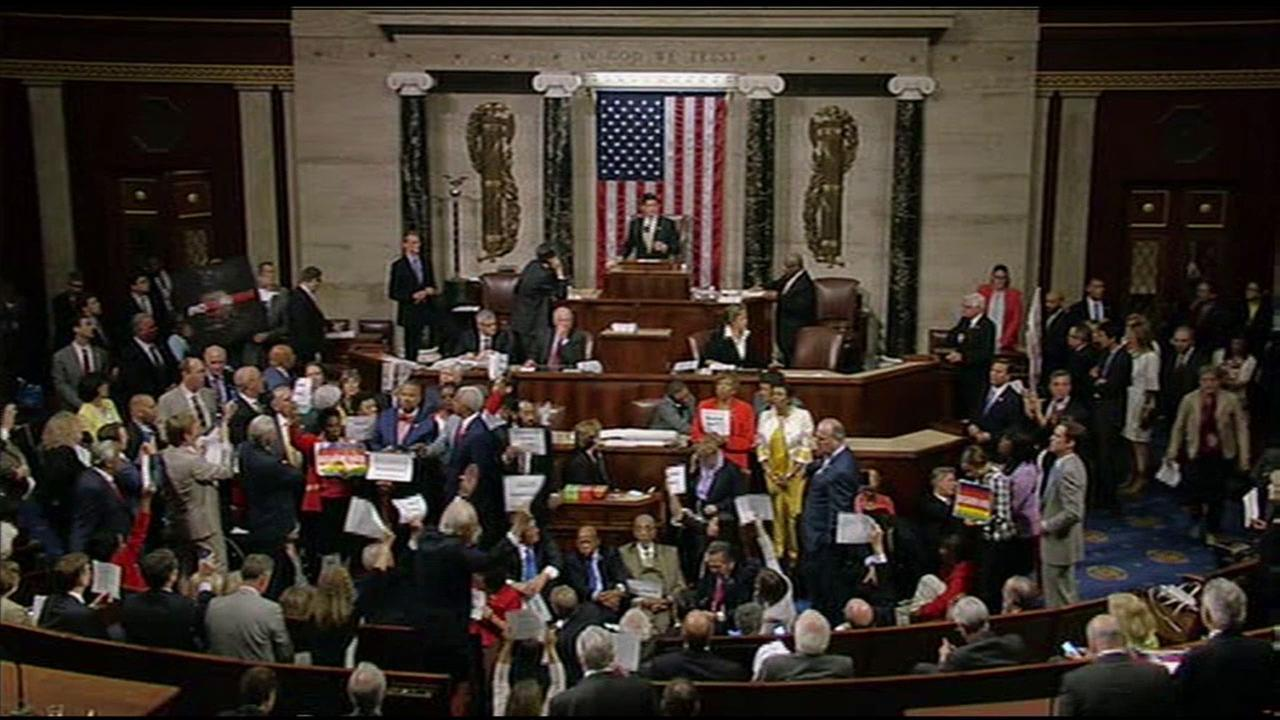 House Democrats staged a sit-in and shouted over Speaker Paul Ryan when he tried to call for a vote on labor legislation.