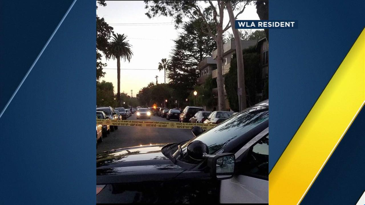 A West Los Angeles resident took a photo of cop cars surrounding an apartment building after reports of a naked man barricaded inside a home on Saturday, Oct. 1, 2016.