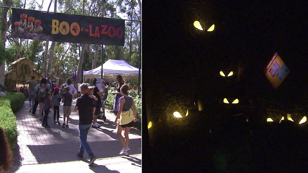 People head into the Boo at the L.A. Zoo event at the Los Angeles Zoo in undated photos.