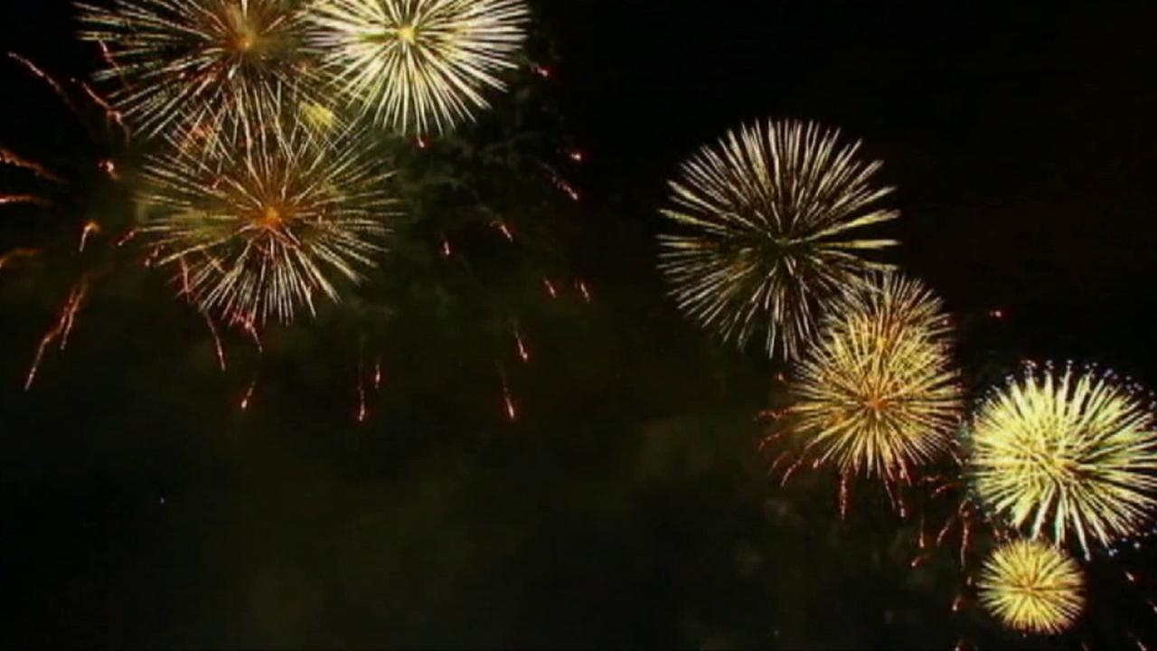 Fireworks illuminate the night sky on Friday, July 4, 2014.