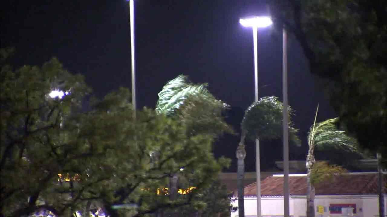 Wild winds seen whipping through Southern California on Friday, Dec. 2, 2016.