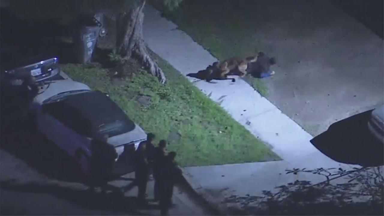 A K-9 unit helped El Monte police take a suspect into custody after a freeway chase that ended in a Baldwin Park neighborhood.