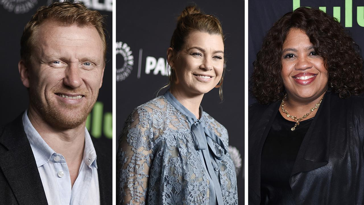 As Greys Anatomy heads into its 14th season this fall, the stars of the show shared their excitement at PaleyFest over the weekend.