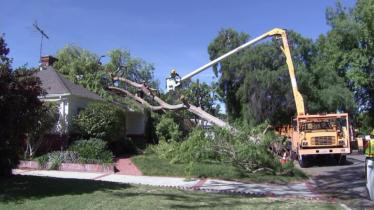 A tree fell onto a home in the 11500 block of La Maida Street in Valley Village after high winds swept through the area on Tuesday, March 28, 2017.