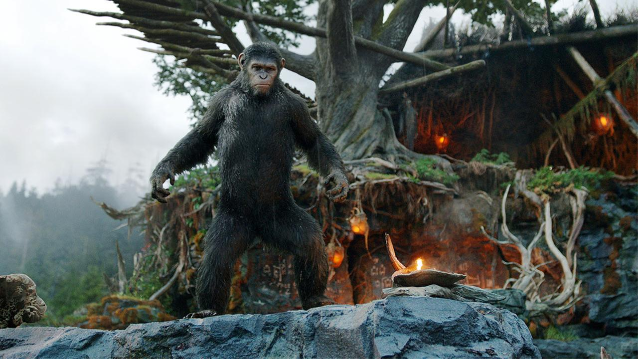 This photo released by Twentieth Century Fox Film Corporation shows Andy Serkis as Caesar in a scene from the film, Dawn of the Planet of the Apes.