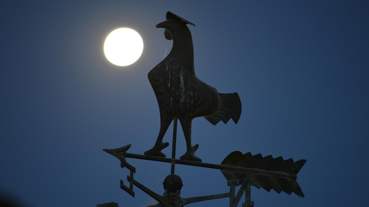 ABC7 viewer Barry Trusty, of Norco, sent in this photo  of the supermoon taken early Sunday, July 13, 2014.