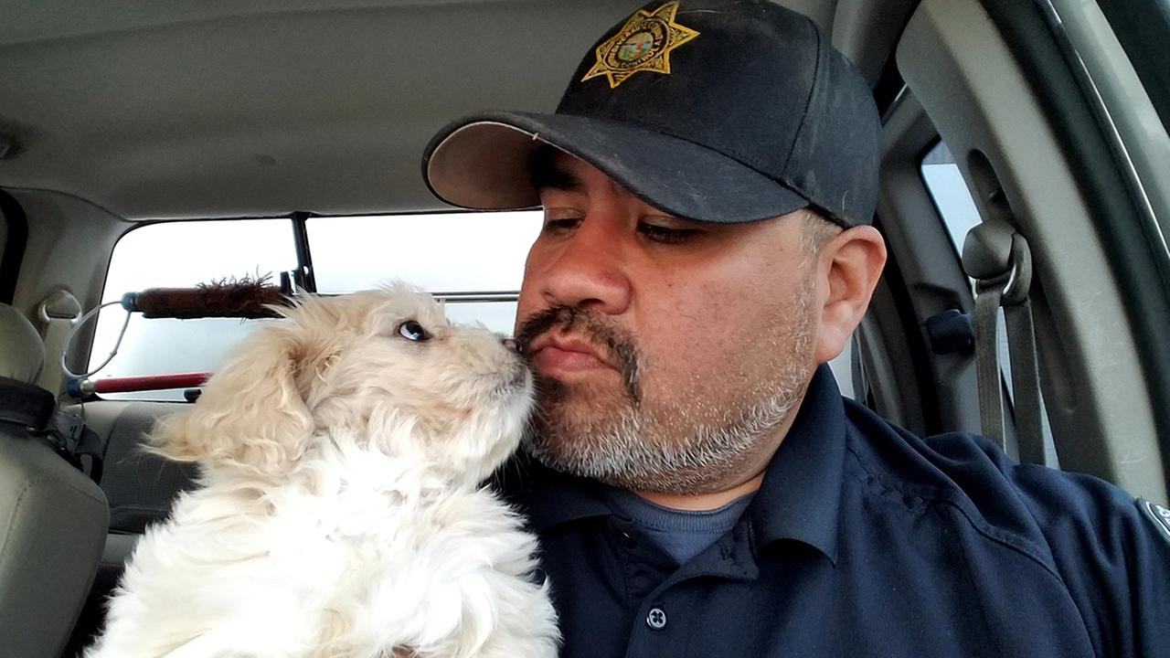 Riverside County Animal Services Officer Marcel Martinez fostered 8-week-old Blanca after her owner was injured in a car crash in Cabazon on April 4, 2017.