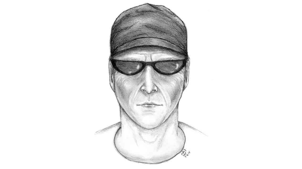 Santa Monica police released a composite sketch of a man accused of assaulting a woman in a parking garage in the 2200 block of Colorado Avenue Wednesday, July 9, 2014.