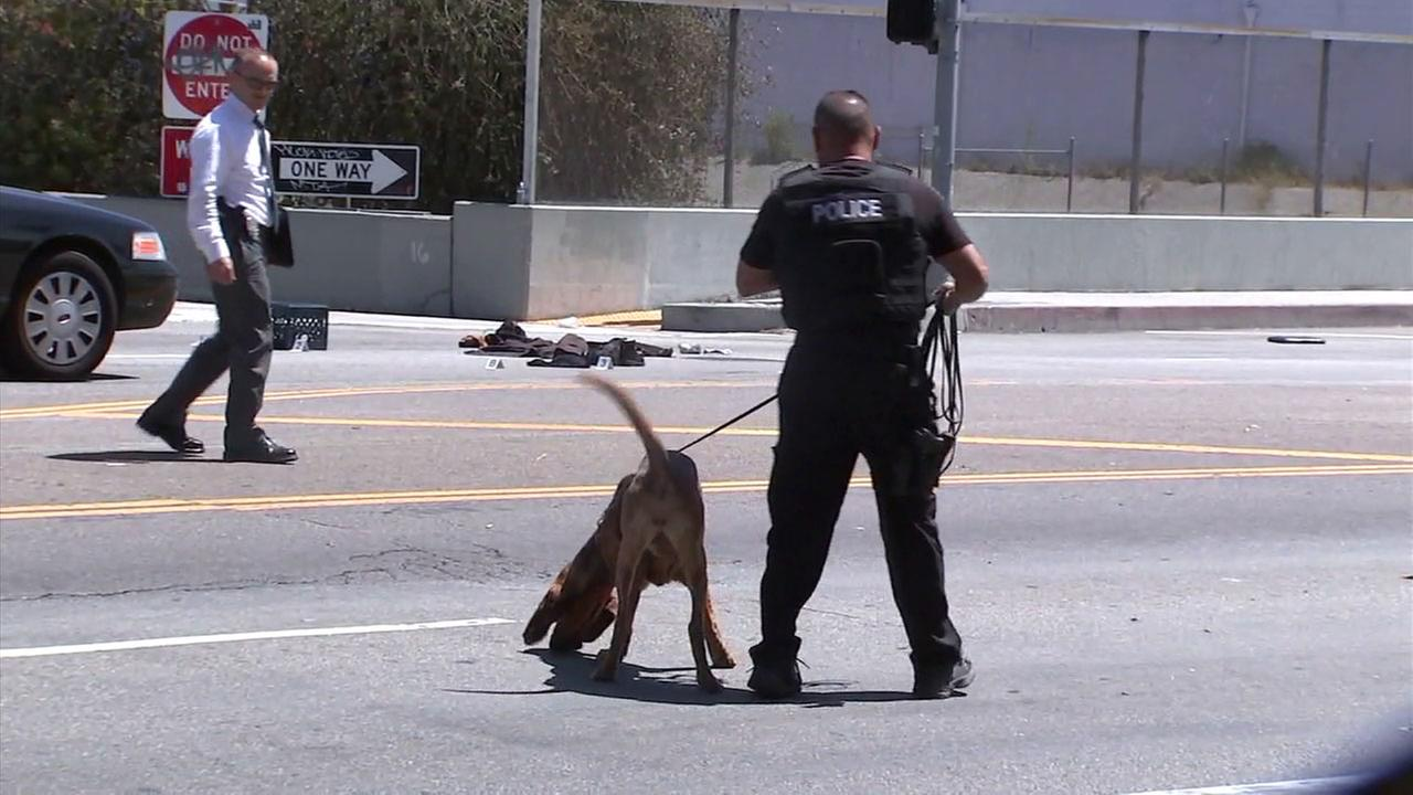 A K-9 unit investigates the scene where a man was found stabbed to death on Hollywood Boulevard on Monday, June 12, 2017.