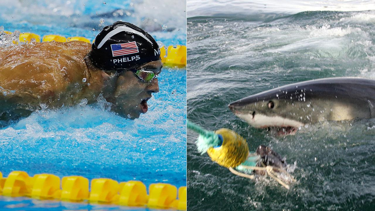 Discovery Channels list of Shark Week programming next month includes a July 23 show titled Phelps vs. Shark: Great Gold vs. Great White.