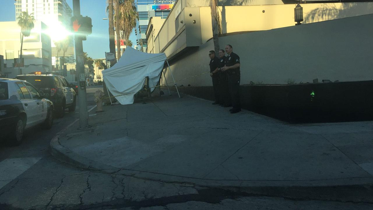 Authorities covered up an area along Sunset Boulevard where a man was found dead on the sidewalk in Hollywood on Monday, June 19, 2017.