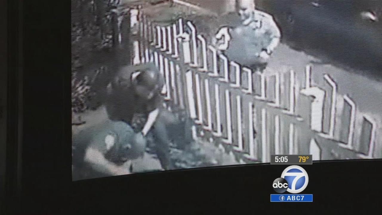 Surveillance video allegedly shows Santa Ana police officers repeatedly punching an alleged burglary suspect on Sunday, June 20, 2014.