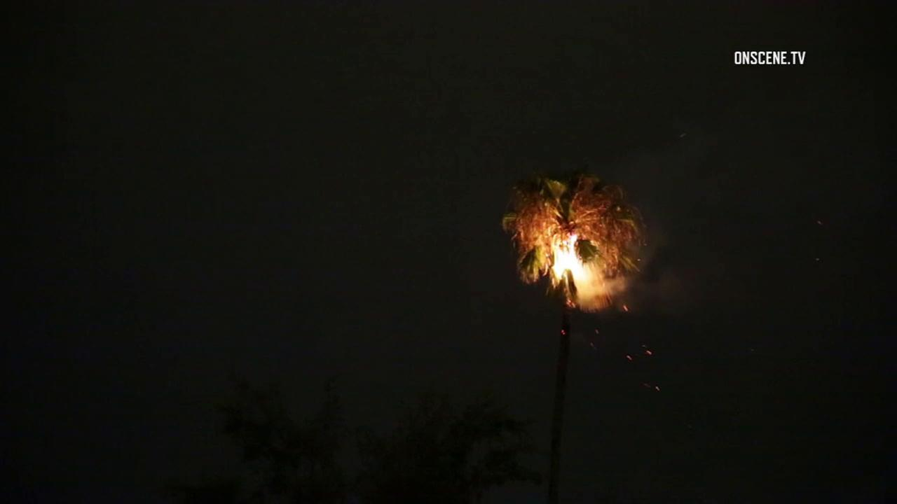 Lightning lit a palm tree on fire in the San Bernardino area on Tuesday, Aug. 1, 2017.