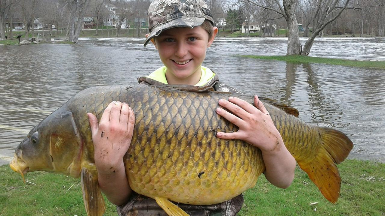This April 22, 2017 photo released by John Stokes shows Stokes son Chase, then 10, holding a giant carp, weighing 33.25 pounds, in Ferrisburgh, Vt.