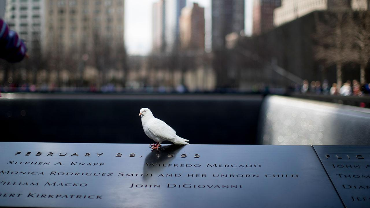 NY identifies remains of 9/11 victim