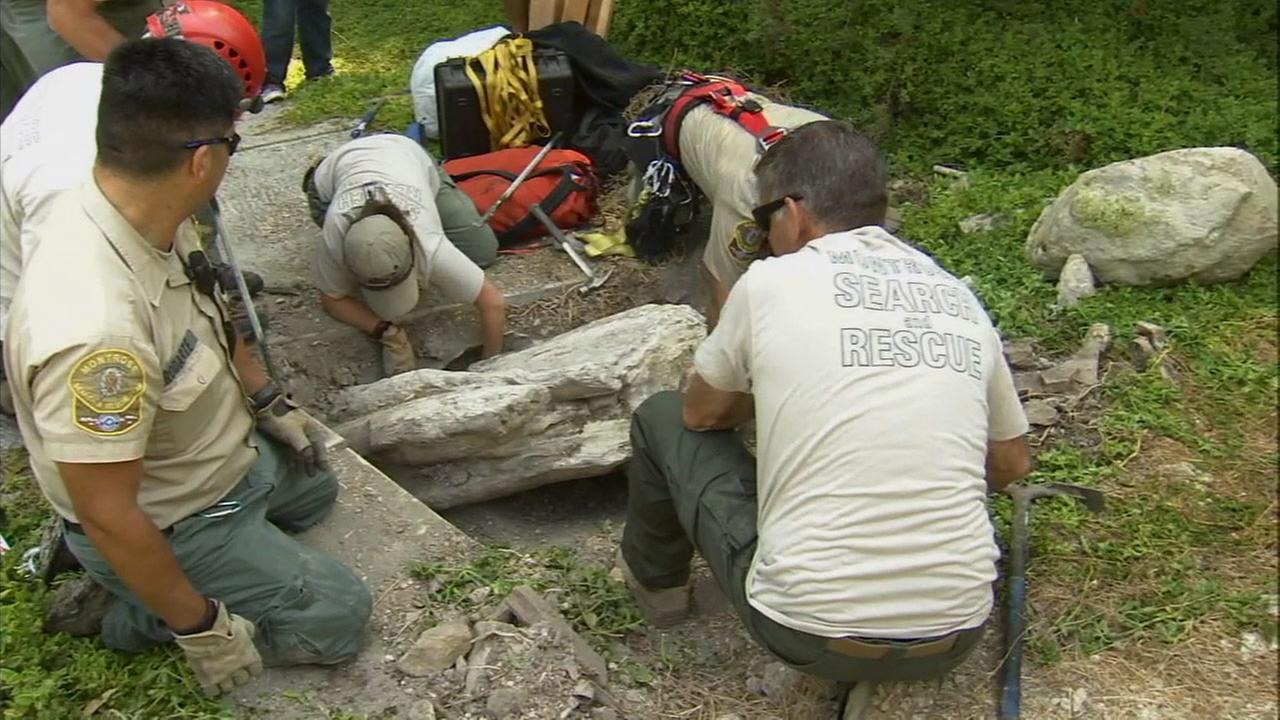 A search-and-rescue team works to recover a rare whale fossil off a Rancho Palos Verdes hillside on Friday, Aug. 1, 2014.