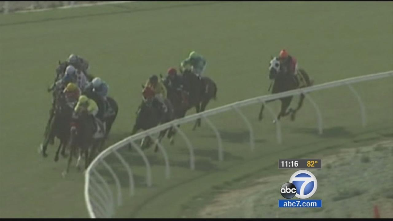 A growing mystery at one of the countrys most popular horse racing tracks - Del Mar in Southern California.