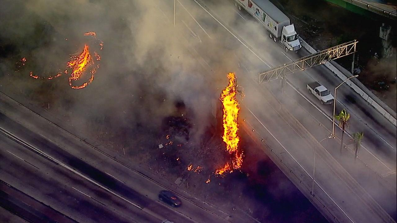 A palm tree goes up in flames as a brush fire rips through vegetation near the 5 Freeway interchange in Boyle Heights on Monday, Oct. 16, 2017.
