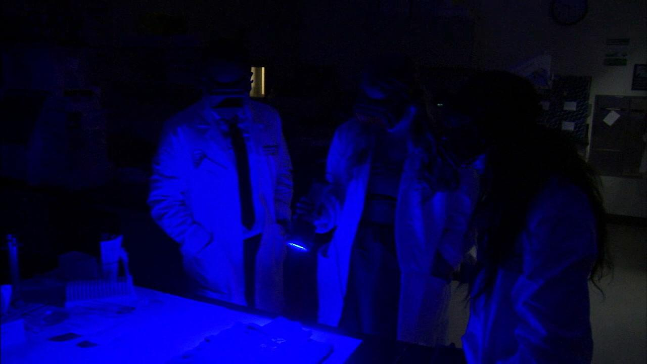 Officials work at a crime lab at Hertzberg-Davis Forensic Science Center in an undated photo.