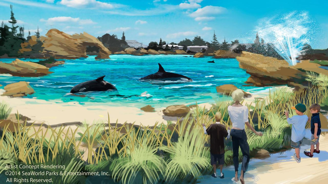 An artist rendering of the new whale environment planned for SeaWorld parks is seen.