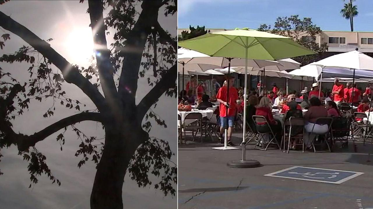 Umbrellas were needed to protect guests from the hot sun at a Thanksgiving meal served by Valley Village-based Temple Beth Hillel.