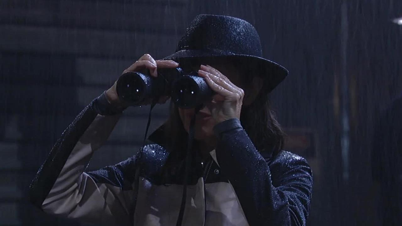 Finola Hughes, who plays Anna Devane on General Hospital, looks through binoculars.