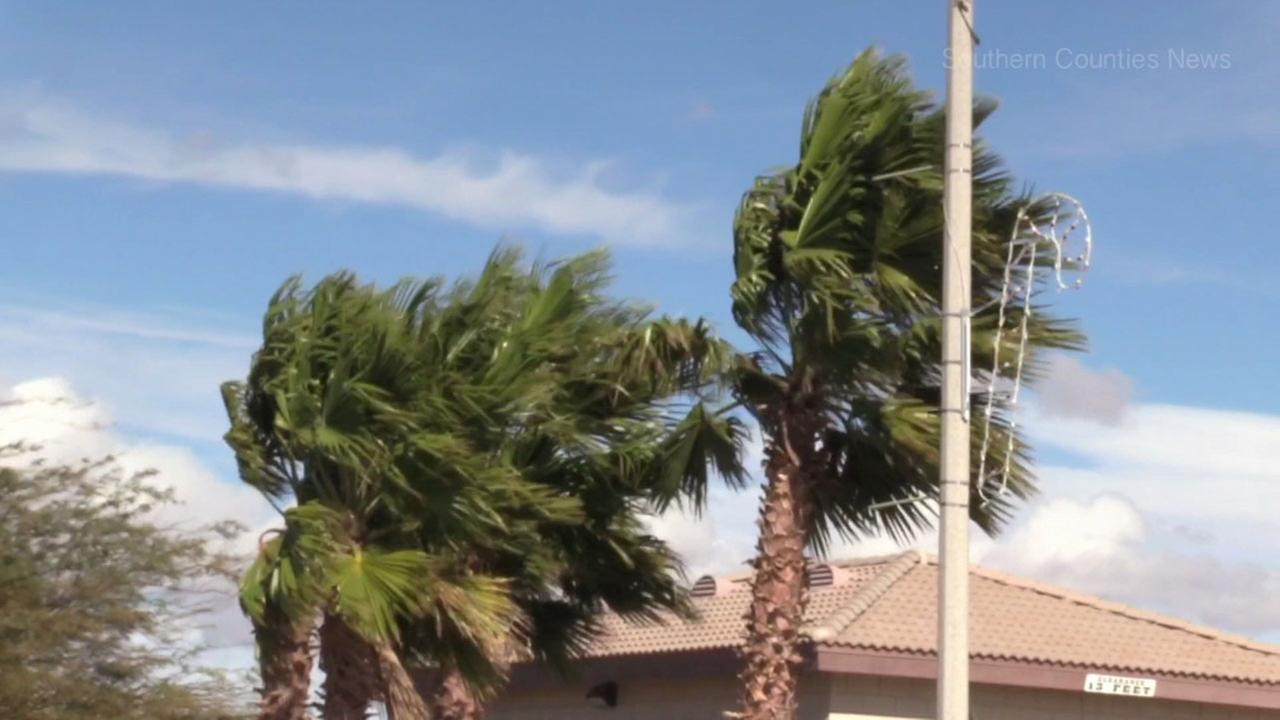 Strong winds blew palm trees in an area of Southern California in a file photo.