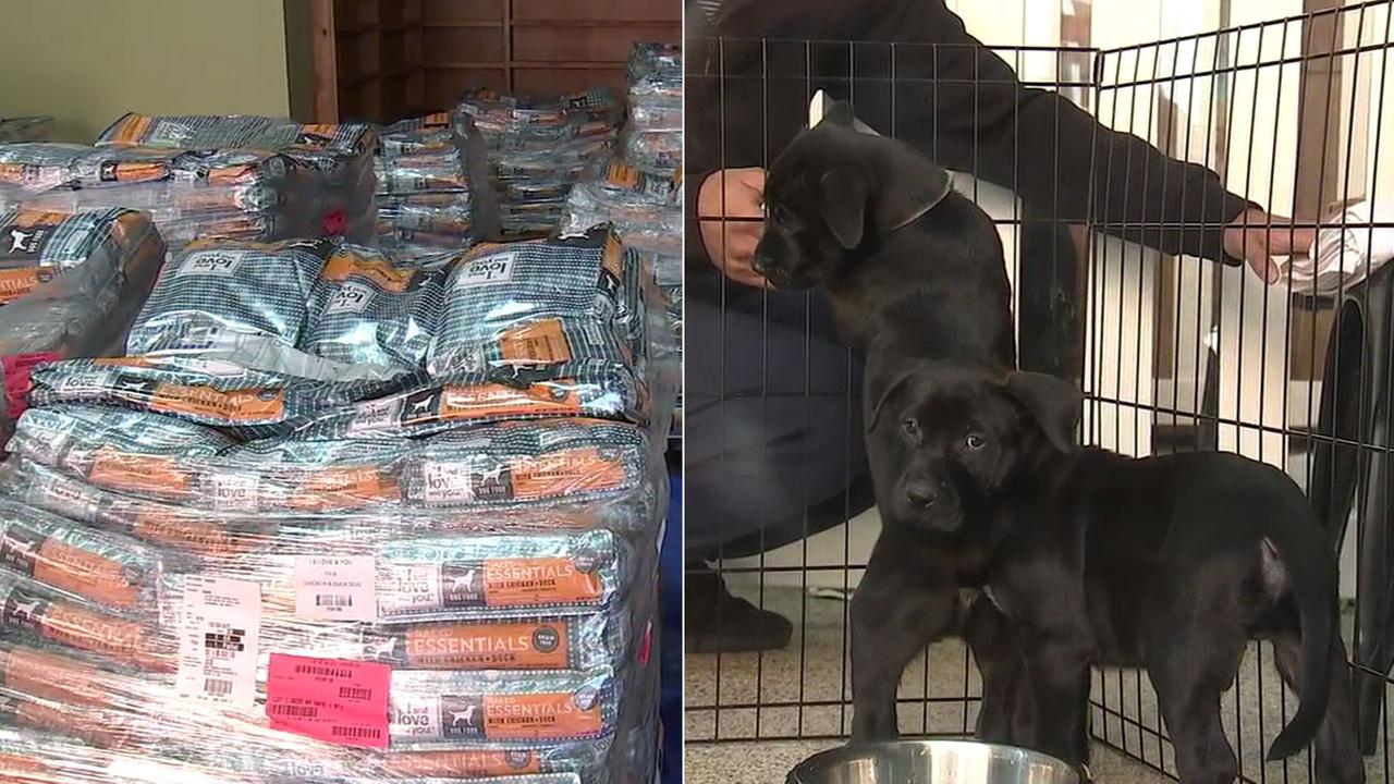 Donated dog meals are shown alongside an image of two puppies who are staying at an animal shelter after being displaced by wildfires in Southern California.
