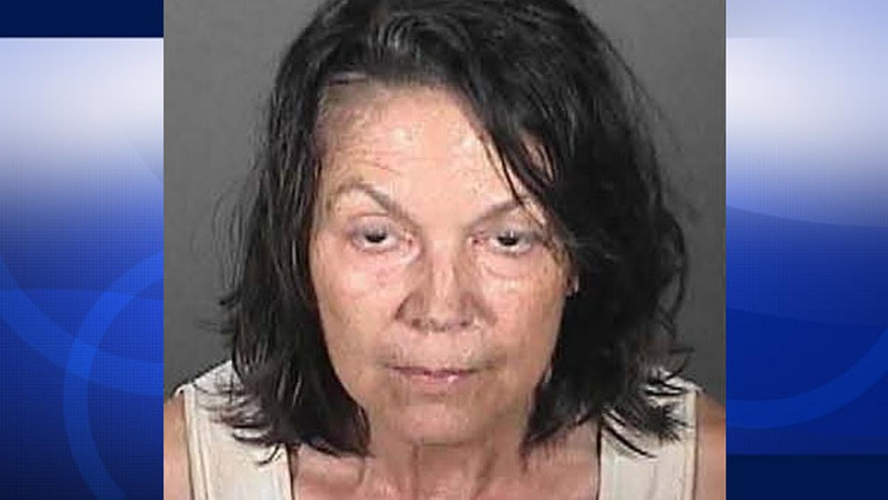 Barbara Nania, 63, is seen in this booking photo released by police.