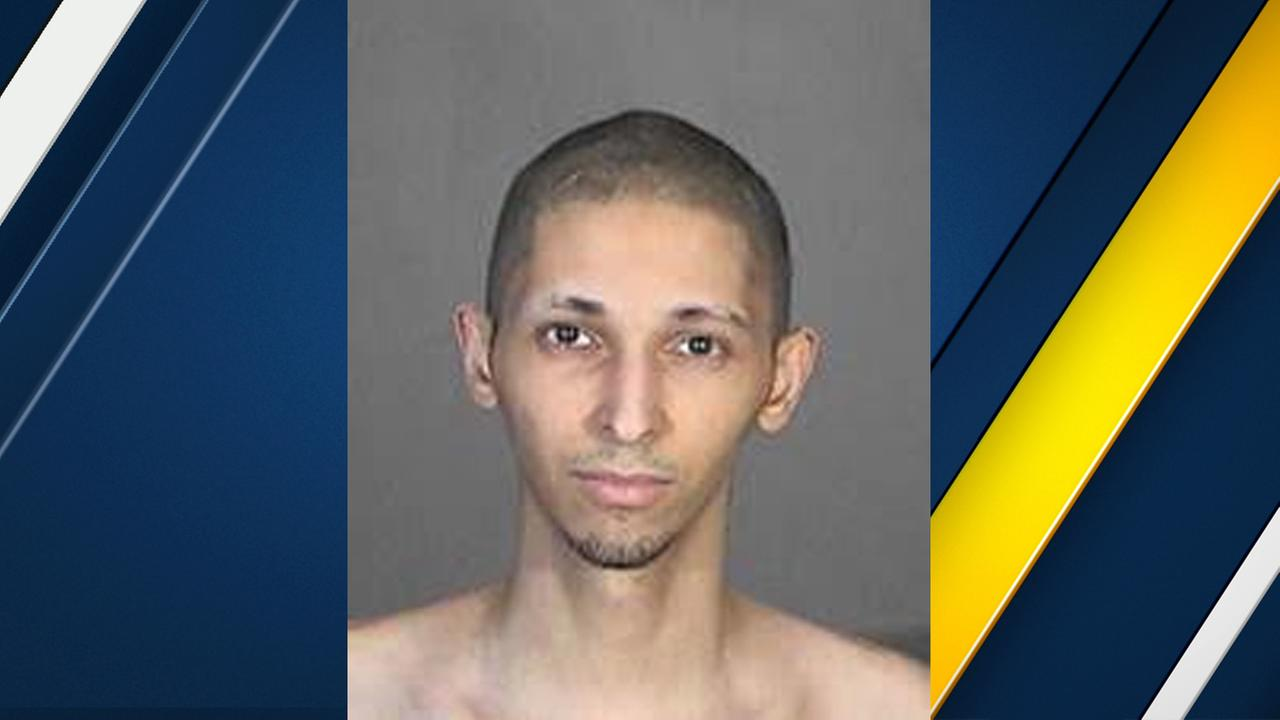 LA swatting suspect also linked to false 911 call in Canada