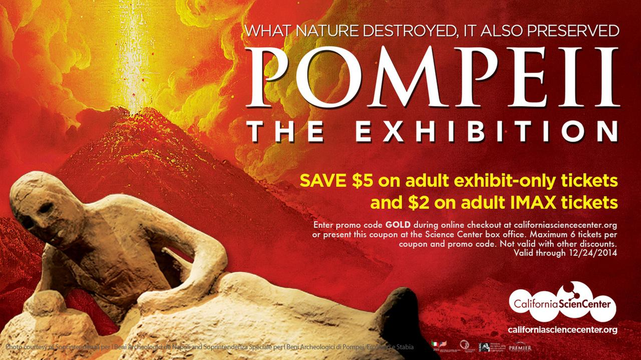 Pompeii Exhibition Coupon