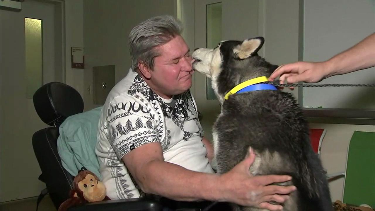 David Guindon and his service dog Zeus were reunited at a shelter in Wildomar on Thursday, Feb. 8, 2018, when the woman who had Zeus surrendered him to the facility.