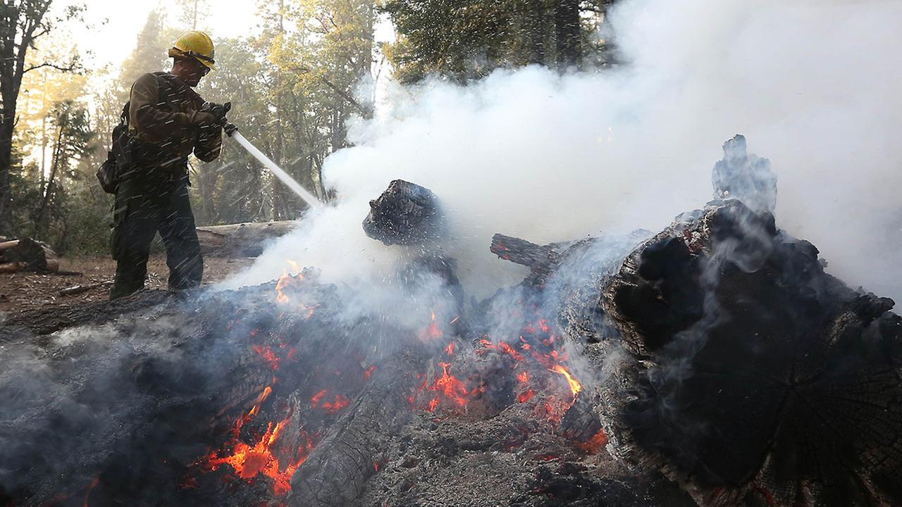 Firefighter Cameron Andersen pours water on burning embers while clearing hot spots of the King fire in the El Dorado National Forest near Georgetown, Calif., Sept. 18, 2014.