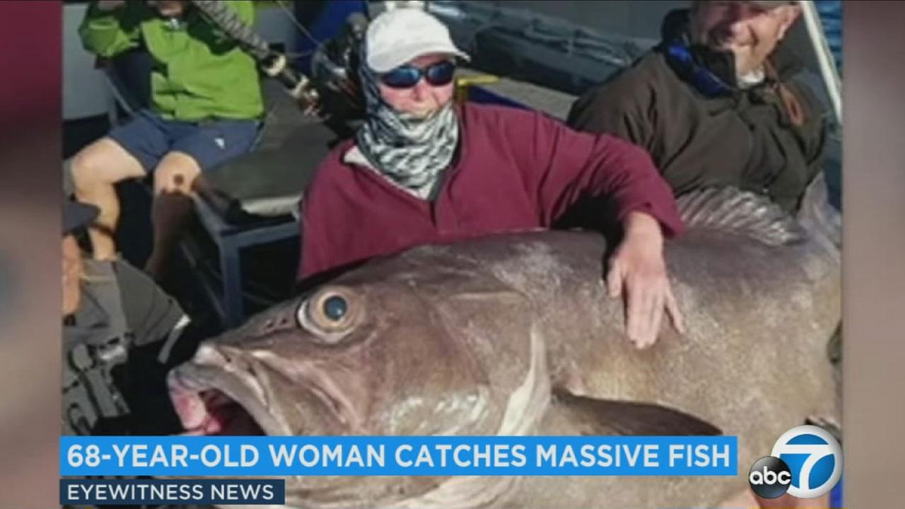 A 68-year-old woman hauled in a 136-pound bass that stretched over five feet while on vacation in Australia.