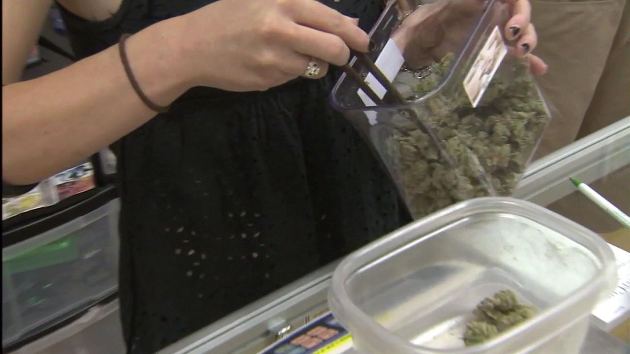 Taxes too high on weed, CA lawmakers say