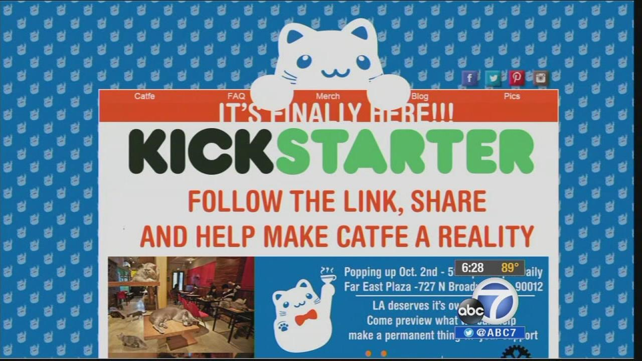 A pop-up cat cafe, dubbed Catfe, will be held in Chinatowns Far East Plaza at 727 North Broadway until Sunday Oct. 5, 2014.