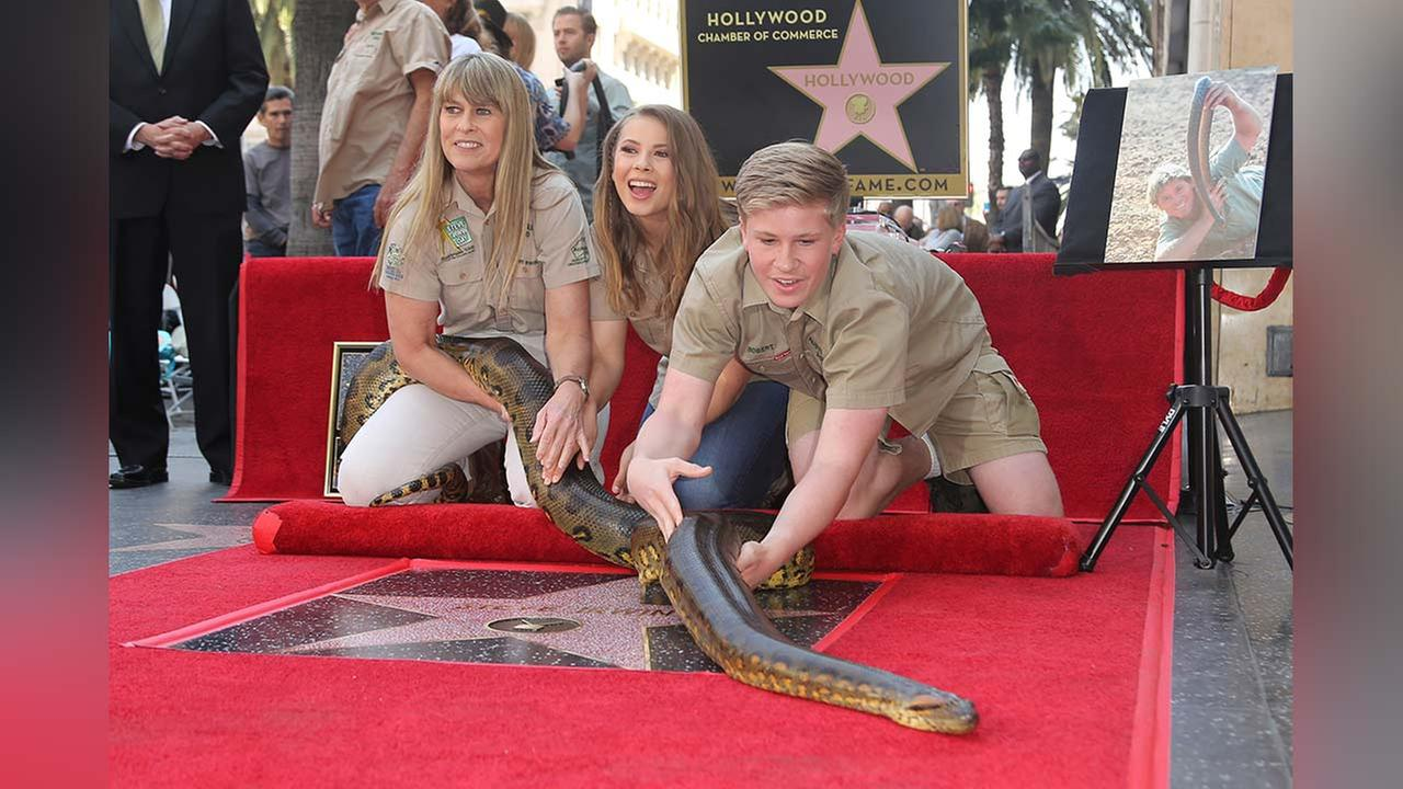 Robert, Bindi and Terri Irwin hold a South American Green Anaconda named Angelina at the ceremony honoring Steve Irwin with a posthumous star on the Hollywood Walk of Fame.