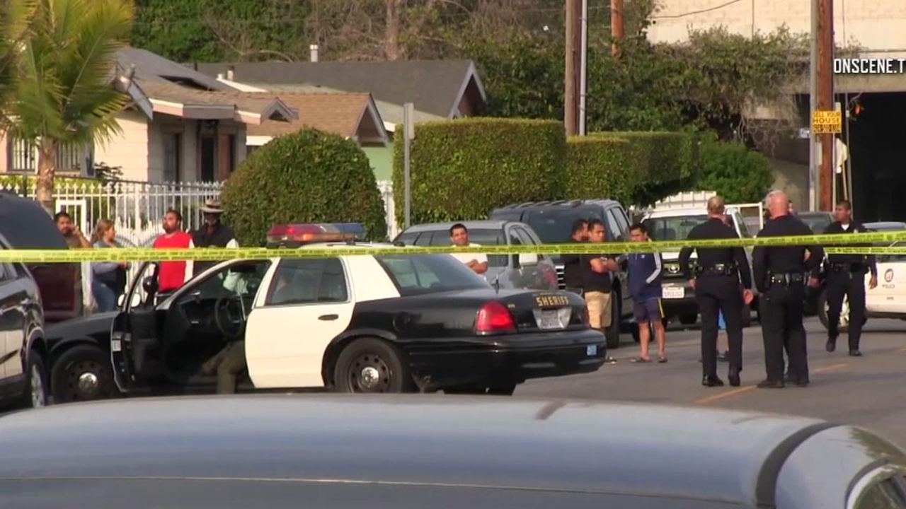 Police were investigating after a 3-year-old child was struck and killed by a car in South Los Angeles.