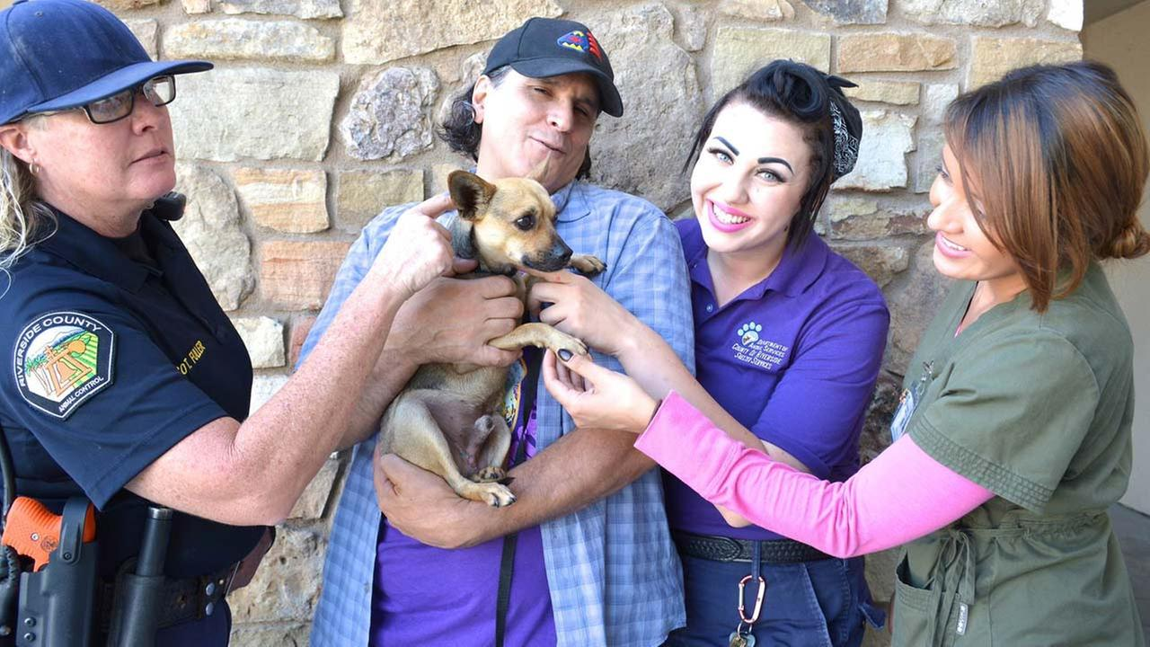 Oscar, a 3-year-old Chihuahua mix who was rescued after being abandoned in a Jurupa Valley dumpster, has been adopted by Temecula resident Victor Rocha.