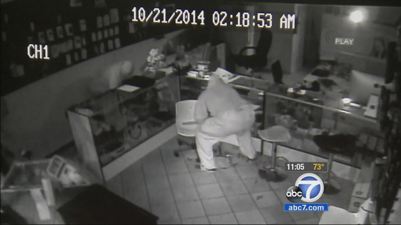 This surveillance still image shows burglars who broke into OzTek Wireless on Tuesday, Oct. 21, 2014.