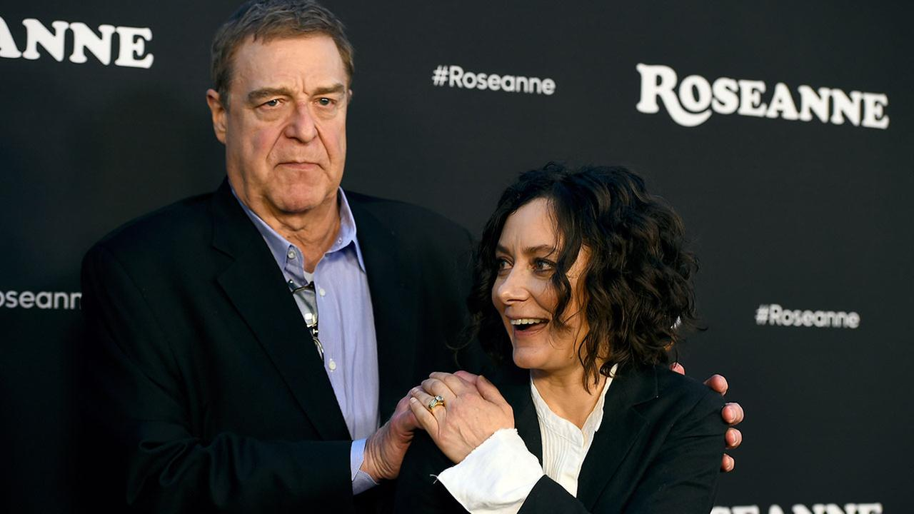 ABC said Thursday that the new series has the working title The Conners and will star John Goodman, Sara Gilbert and other Roseanne co-stars.
