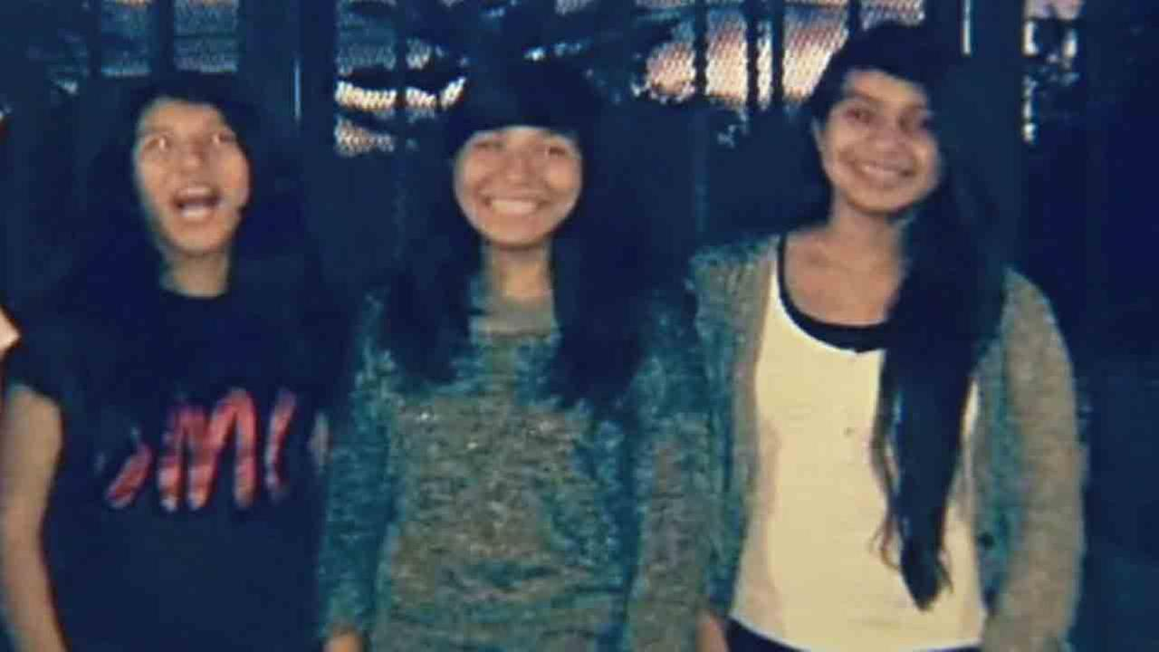 Twins Lexi Perez-Huerta and Lexandra Perez-Huerta and their family friend Andrea Gonzalez were fatally struck by a hit-and-run driver in Santa Ana Friday, Oct. 31, 2014.