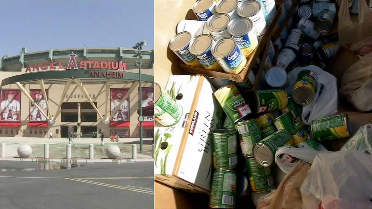 The Los Angeles Angels of Anaheim are hosting a holiday food drive, allowing fans who donate to play ball, check out the field or tour the clubhouse.