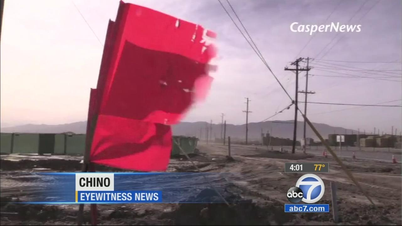Strong winds have been whipping up trouble across Southern California, bringing down trees and power lines.