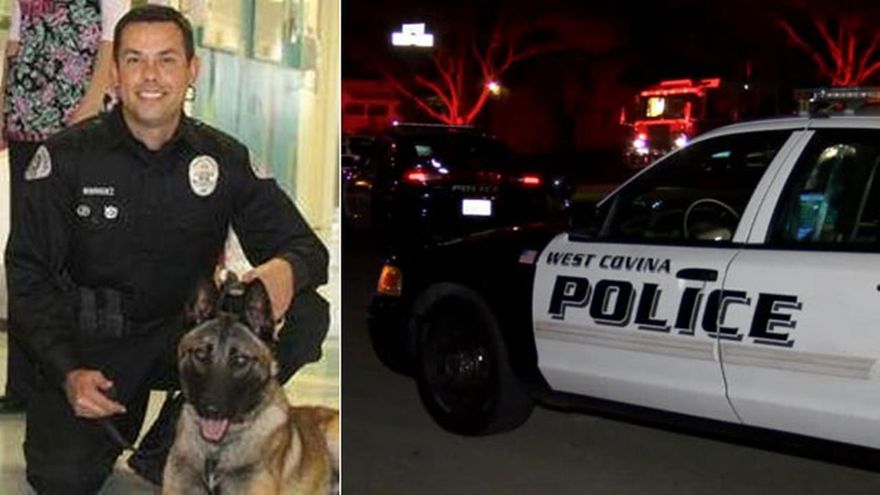 Reiko, a police K-9 with the West Covina Police Department, was shot by a suspect on Sunday, Nov. 23, 2014.