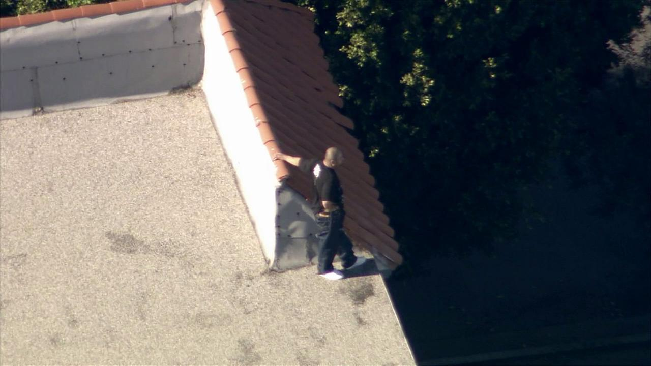 A suspect in a high-speed chase out of Palmdale looks out from a roof in Culver City Monday, Nov. 24, 2014.