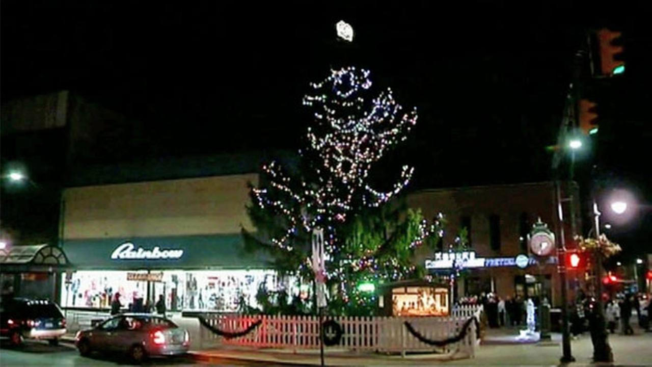 An ugly Christmas tree gets some love from a Pennsylvania town because it resembles the scraggly tree from A Charlie Brown Christmas.