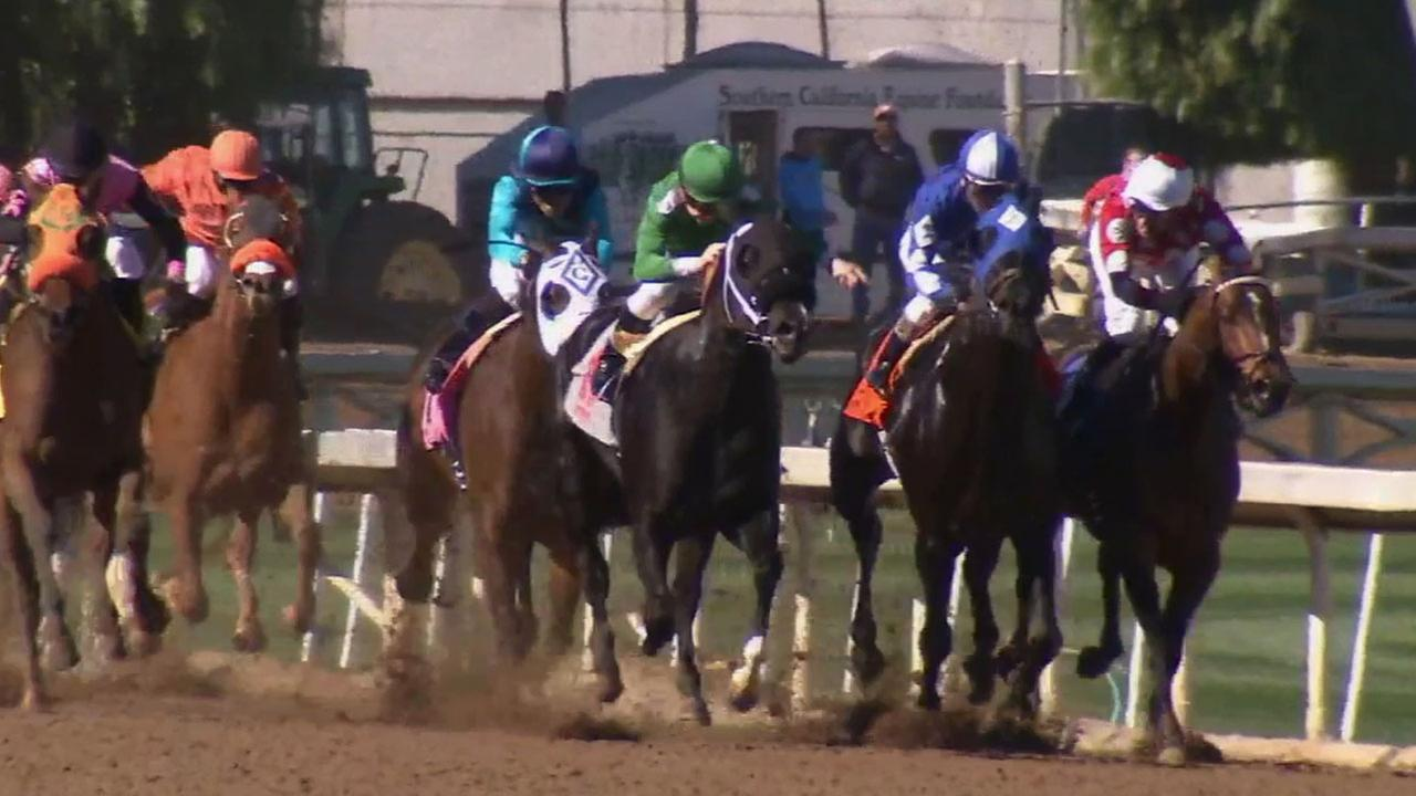 The 78th winter-spring season of horse racing at the Santa Anita Parks racetrack kicked off Friday, Dec. 26, 2014, drawing a crowd of about 30,000 people.